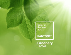 pantone-color-of-the-year-2017-greenery-15-0343-press-release-1