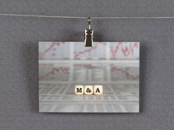 The Art of the Deal: Insights into the M&A process